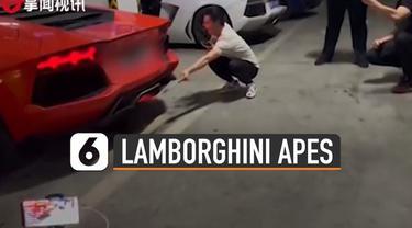 Nasib apes dialami oleh seorang pria ini karena aneh-aneh membakar sate menggunakan mobil Lamborghininya.