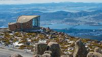 Ilustrasi Tasmania (iStock)