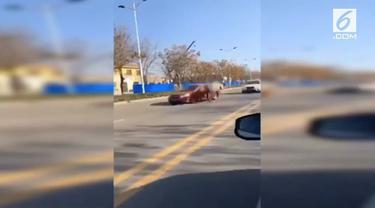 Detik-detik seekor kuda pelari bertabrakan dengan mobil BMW di China. Diduga kuda melarikan diri dari peternakan.