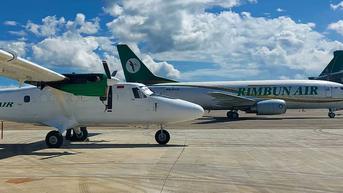 Pesawat Rimbun Air yang Jatuh di Papua Dinilai Laik Terbang