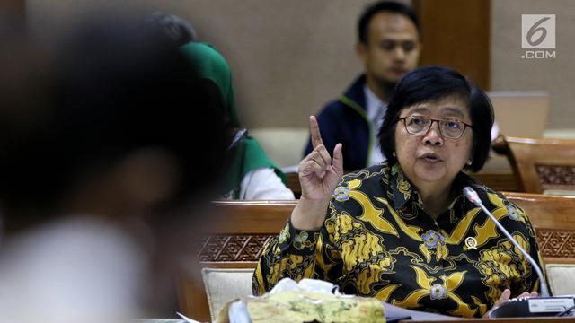 Menteri LHK Bahas Isu Tambang dan Sampah Plastik Bersama DPR
