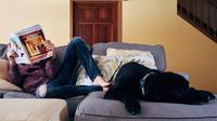 Masalahnya rumah Anda bukan rumah yang luas, sehingga memelihara hewan berisiko membuat rumah mudah berantakan.