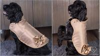 Hampir 2 miliyar rupiah, jaket ini menjadi jaket anjing termahal di dunia. (doc: Doggy Armour/VeryFirstTo)