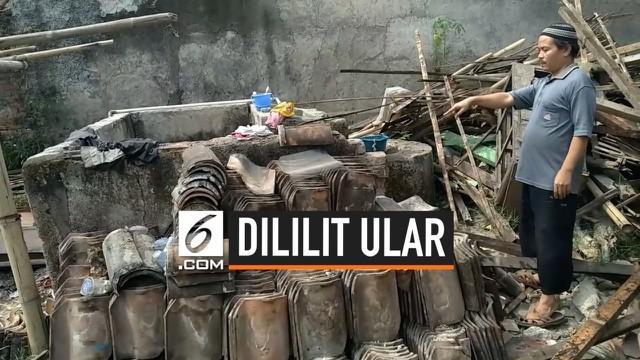 Seorang pria di Bandung Barat tewas terlilit ular sanca peliharaannya sendiri. Korban dikenal hobi memelihara ular dari yang kecil hingga yang mencapai 3 meter panjangnya.
