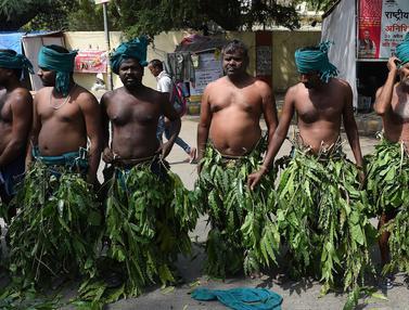Petani India