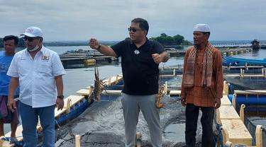 Wakil Ketua Umum Kadin Bidang Kelautan dan Perikanan, Yugi Prayanto usai mengunjungi tempat budidaya lobster di Telong Elong, NTB, Minggu (11/4/2021).
