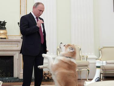 20161213-Putin-dan-Anjing-Reuters1