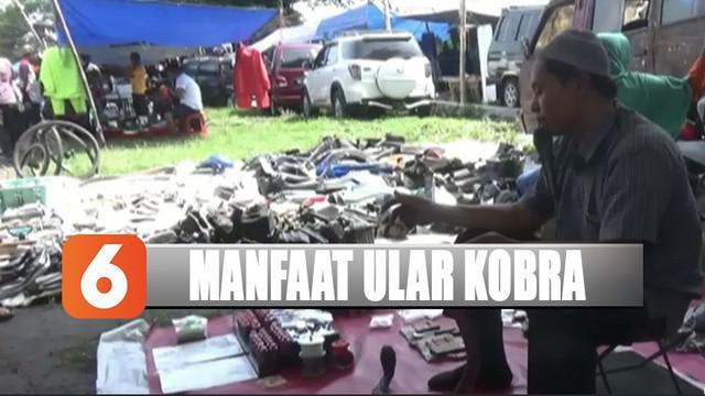 Di Pasar Klitikan Jatinom, Klaten, Jawa Tengah, dirinya mengolah bagian organ ular kobra menjadi obat.