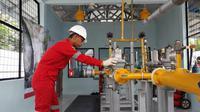 Keekonomian dan ketersediaan infrastruktur adalah kata kunci pengembangan proyek gas.