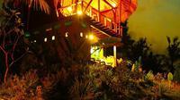 Tree House, Bali. (dok. instagram @baliantreehouse/https://www.instagram.com/p/BQ-PbcklV51//Tri Ayu Lutfiani)