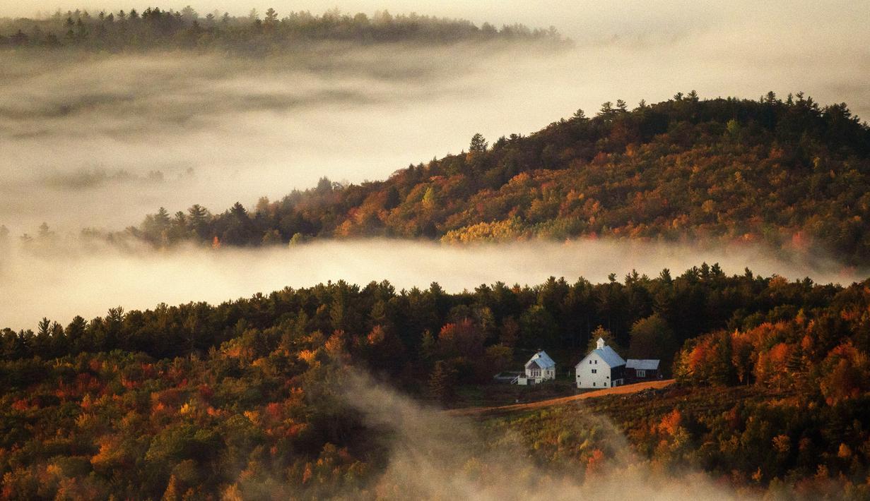 Kabut lembah berembus melalui perbukitan berwarna musim gugur di dekat Picket Hill Farm, Oxford County, Maine, Amerika Serikat, Rabu (13/10/2021). Salah satu yang paling khas dari musim gugur adalah pohon-pohon yang berubah warna sebelum gugur. (AP Photo/Robert F. Bukaty)