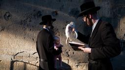 Pria Yahudi ultra-Ortodoks mengayunkan ayam memutari kepala bayi dalam ritual Kaparot di Bnei Brak, Israel, Minggu (16/9). Tradisi yang dimulai 800 tahun lalu itu digelar sebelum perayaan Yom Kippur atau Hari Penebusan pada Selasa esok. (AP/Oded Balilty)