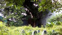 Wajah Makam Buttatianang (tanah hamil) di Makassar yang diyakini masyarakat setempat cukup angker (Liputan6.com/ Eka Hakim)