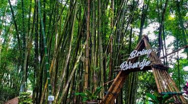Bring Rahardjo, dari Tempat Buang Sampah Jadi Spot Nongkrong Asyik di Batu Malang