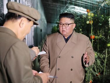 Gaya Kim Jong-un saat Tinjau Lahan Pertanian
