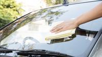 Jamur bisa timbul di dalam mobil dan biasanya kemunculan jamur di dalam mobil akibat ada makanan cair atau minuman tumpah yang tidak segera dibersihkan. Bila jamur ini tidak segera bersihkan, dapat membuat jok kursi jadi jelek dan rusak.
