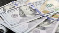 Petugas memperlihatkan uang pecahan dolar Amerika di salah satu gerai penukaran mata uang di Jakarta, Jumat (18/5). Pagi ini, nilai tukar rupiah melemah hingga sempat menyentuh ke Rp 14.130 per dolar Amerika Serikat (AS). (Liputan6.com/Immanuel Antonius)