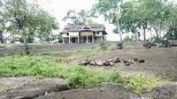 Masjid kayu itu berada tepat di atas hamparan bukit bebatuan gamping seluas 300 meter. (Liputan6.com/Eka Hakim)