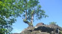 Situs Watu Tumpang, Karangsambung, Kebumen, Jawa Tengah pada masa jayanya kerap dikunjungi oleh orang dengan beragam keinginan. (Foto: Liputan6.com/Muhamad Ridlo)