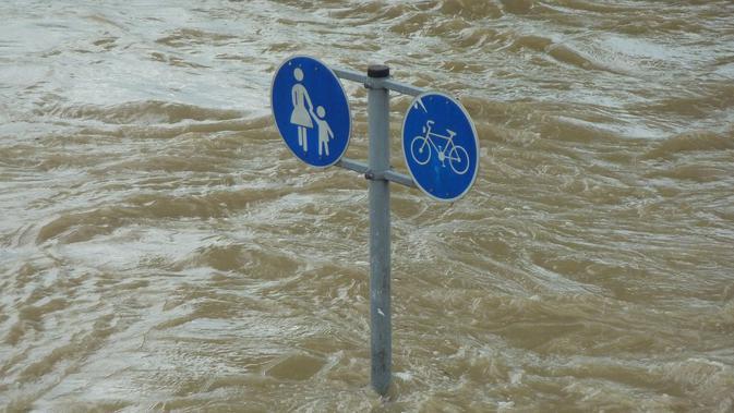 Ilustrasi banjir. (dok. pixabay/@hermann)