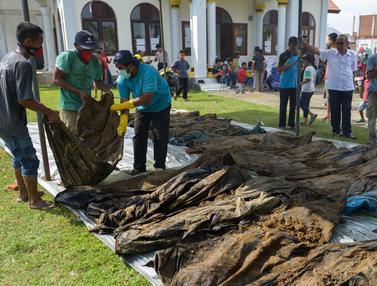 Penemuan 30 Jenazah Korban Tsunami Aceh Bikin Kaget Warga