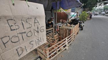 Suasana pedagang ayam di kawasan jalan raya Bogor KM 32, Depok, Selasa (12/6). Menjelang perayaan Idul Fitri 1439 H, para pedagang ayam dan entok mulai memadati pinggir jalan raya Bogor KM 32. (Liputan6.com/Herman Zakharia)