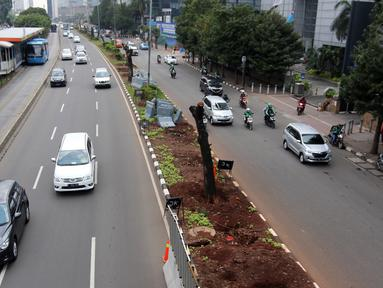 Kendaraan melintas di samping-pohon-pohon yang telah ditebang di Jalan Sudirman, Jakarta, Jumat (9/3). Sebanyak 541 pohon di sepanjang Jalan Sudirman-Thamrin ditebang imbas penataan trotoar yang akan dimulai Pemprov DKI. (Liputan6.com/Arya Manggala)