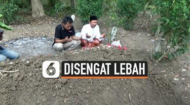 Seorang wargga Tuban, Jawa timur tewas setelah diengat ratusan lebah di belakang rumahnya. Korban menderita ratusan luka di sekujur tubuhnya.