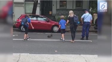 Polisi memberhentikan arus lalu lintas di kawasan Woollhara, Sydney karena sekumpulan bebek yang ingin menyeberang.