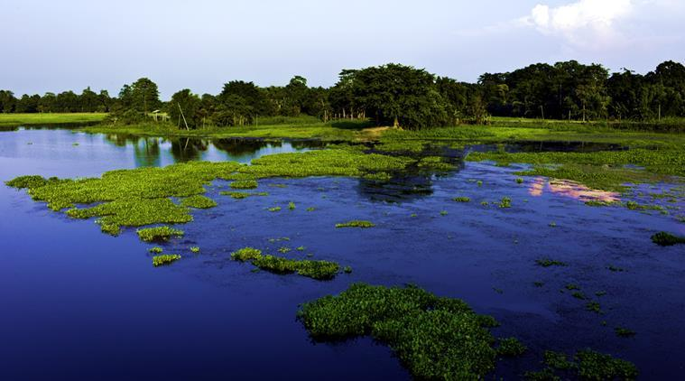 Pulau Majuli . Source: http://images.indianexpress.com