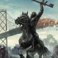 Adegan di film  Dawn of the Planet of the Apes. Foto: Hypable