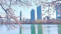 Kawasan wisata Seokchon Lake di Seoul, Korea Selatan. (dok.Instagram @madame_oh_seoul_story/https://www.instagram.com/p/Bv1oqOWH9Dd/Henry