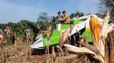 Perluasan Lahan Pertanian Buka Peluang Usaha Jasa Alsintan