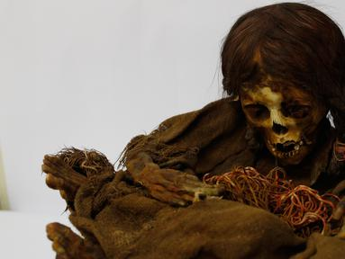 Mumi gadis Inca berusia 500 tahun yang tersimpan di Museum Arkeologi Nasional, La Paz, Bolivia, Kamis (15/8/2019 ). Mumi tersebut telah dikembalikan ke Bolivia sekitar 129 tahun setelah disumbangkan ke Museum Universitas Negeri Michigan pada tahun 1890. (AP Photo/Juan Karita)