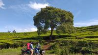 Ilustrasi Pendaki Gunung. Foto: (Ade Nasihudin/Liputan6.com)