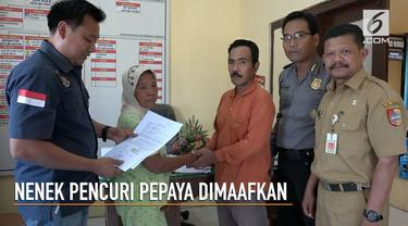 Pemilik pohon pepaya yang dicuri Nenek Alma memaafkan perbuatan pelaku setelah dimediasi pihak kepolisian.