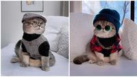 Gaya kucing saat pakai kostum untuk pemotretan ini bikin gemas. (Sumber: Instagram/@a_street_cat_named_benson)