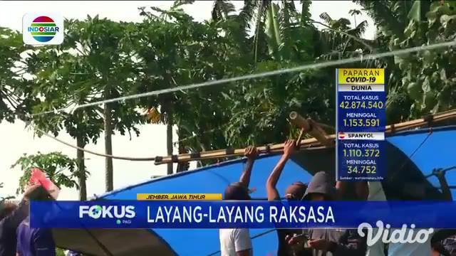 Layang-layang gapangan yang dimainkan oleh warga Jember, Jawa Timur ini berukuran raksasa yakni sekitar 10x10 meter. Butuh banyak persiapan dan puluhan orang untuk menerbangkan layang-layang gapangan ini.