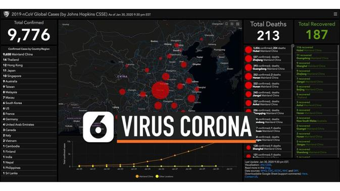 virus corona penyakit korona