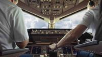 Ilustrasi pilot. (iStock)