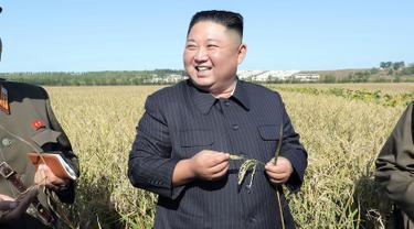 Gambar tak bertanggal yang dirilis pada 9 Oktober 2019, pemimpin Korea Utara, Kim Jong-un mengunjungi ladang pertanian No. 1116 dari KPA Unit 810 di lokasi yang dirahasiakan. Ini merupakan penampilan perdana Kim Jong-un sejak perundingan nuklir dengan AS tidak mencapai titik temu. (KCNA VIA KNS/AFP)