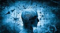 Benarkah Omega-3 Baik untuk Kesehatan Otak? (Adike/Shutterstock)
