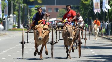 Dua peserta berusaha mengendalikan hewan ternaknya saat mengikuti perlombaan balap kereta sapi selama festival tradisional menjelang perayaan Tahun Baru Hindu, Sinhala dan Tamil di Kolombo, Sri Lanka, Minggu (1/4). (LAKRUWAN WANNIARACHCHI/AFP)