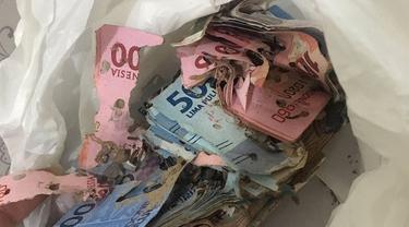Simpan Uang Di Lemari, Perempuan Ini Temukan Uangnya Dimakan   Rayap