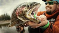 Ilustrasi memancing ikan