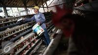 Pekerja memberi pakan di kandang ternak ayam telur di Cibeber, Cianjur, Jawa Barat, Rabu (30/11). Peternakan ayam tersebut memproduksi telur ayam mencapai satu ton telur per hari dari 20 ribu ekor ayam. (Liputan6.com/Faizal Fanani)