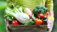 Jangan sampai kurang makan sayur kalau nggak mau gemuk ya, girls! (Sumber Foto: shutterstock)