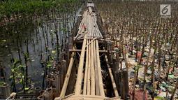 Kondisi papan jalan setapak dan hutan mangrove di kawasan Muara Angke, Jakarta Utara, Sabtu (14/4). Sampah yang mayoritas bersumber dari limbah domestik rumah tangga itu berdampak buruk bagi ekosistem di lingkungan sekitar. (Liputan6.com/Johan Tallo)