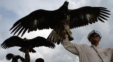 5 Fakta Soal Burung Elang Lifestyle Fimela Com