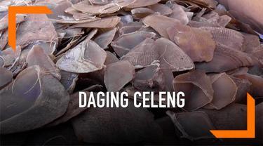 Polisi Bakauheni menggagalkan upaya penyelundupan 1,2 ton daging babi hutan yang dibawa dari Medan menuju Jakarta. Selain daging celeng, ditemukan juga ratusan lembar kulit ular dan puluhan kilogram sisik trenggiling.